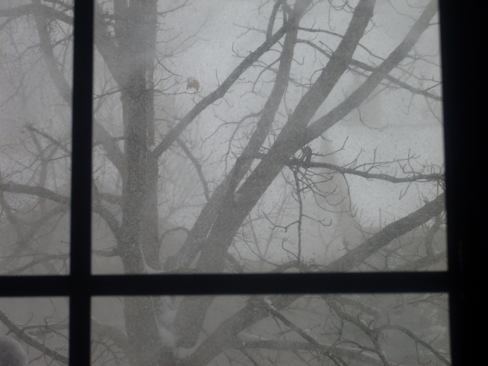 a-winter-memory