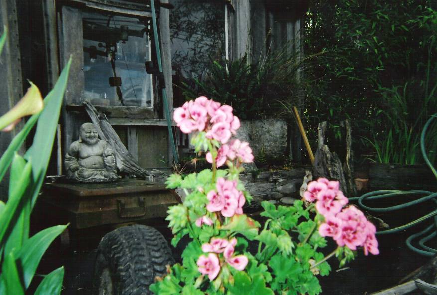 buddha-and-blooms