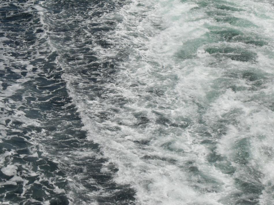 the waves v