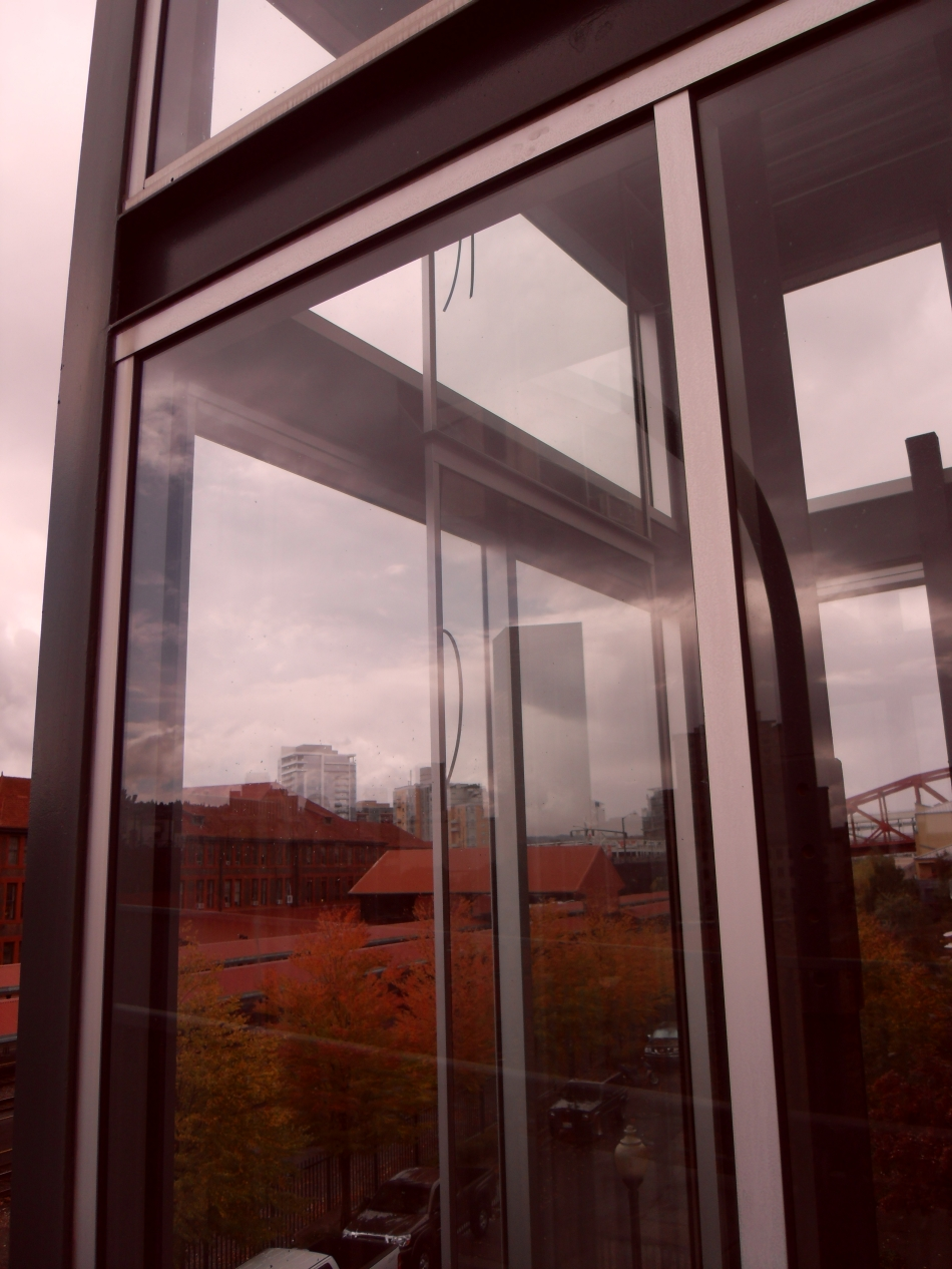glass elevator autumn leaves