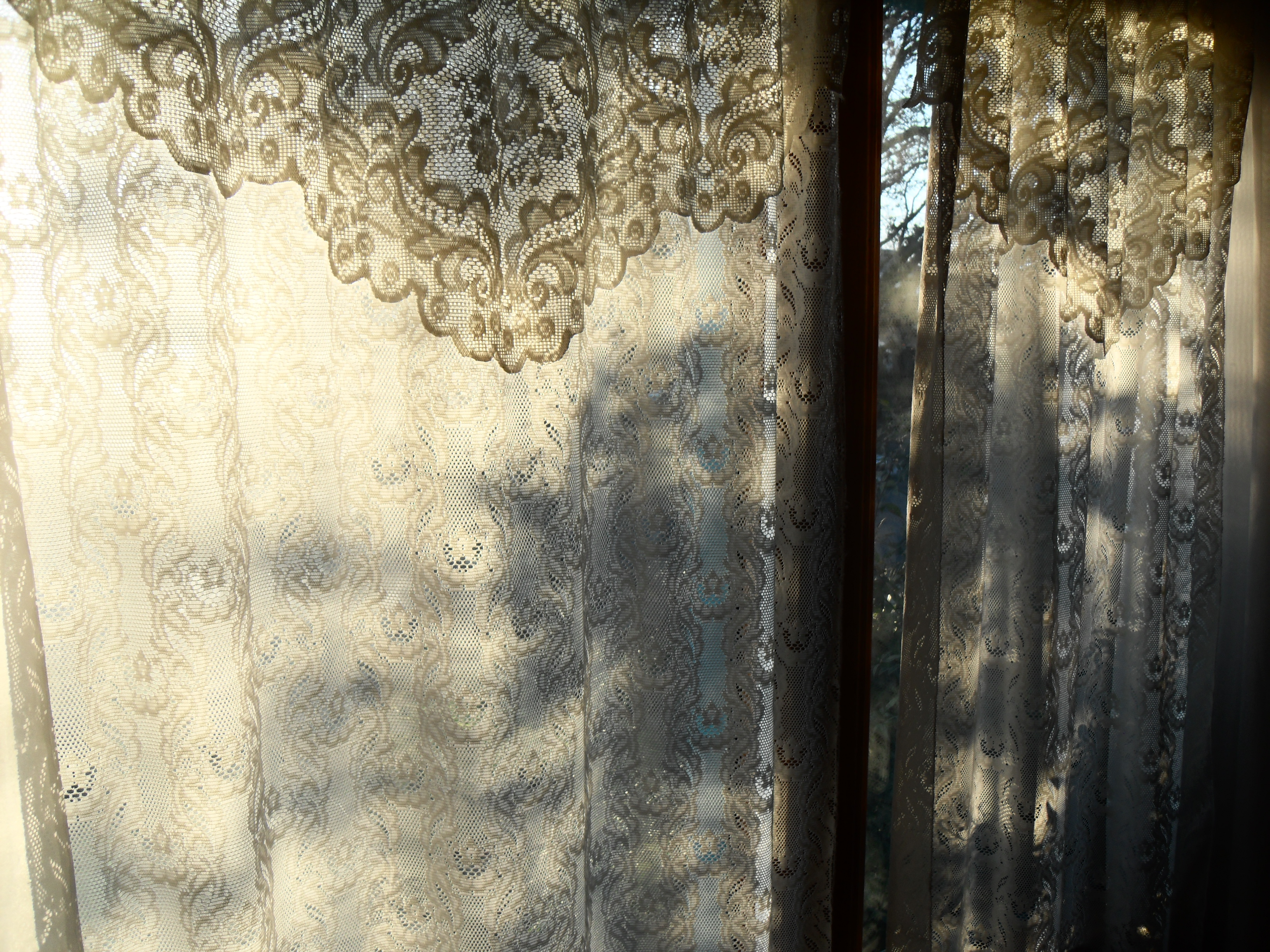 white lace curtains on a winter centuries