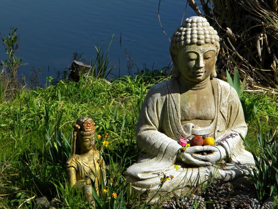 Larkspur Buddha